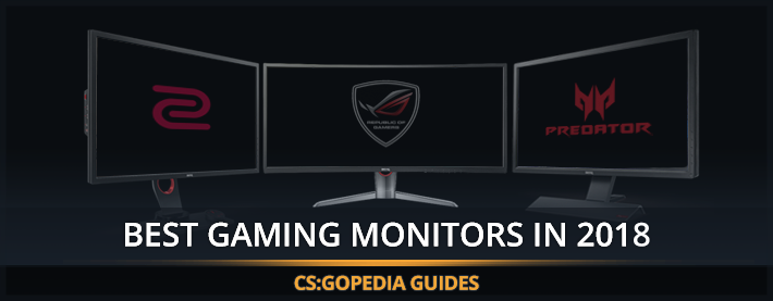 The Best Gaming Monitors For CS:GO in 2019 - Approved by Pro